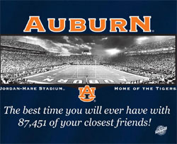 Auburn Tigers Football T-Shirts - Welcome to My House Jordan Hare Stadium