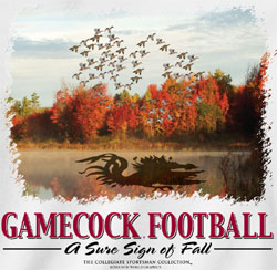 South Carolina Gamecocks Football T-Shirts - Duck Fall Formation
